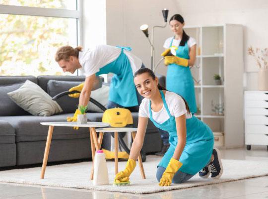 best cleaners in brisbane
