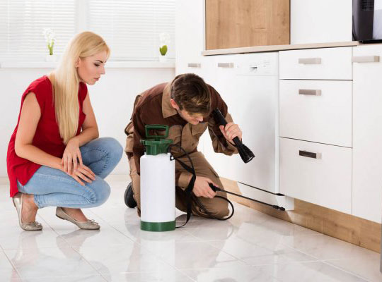 professional cleaners in brisbane